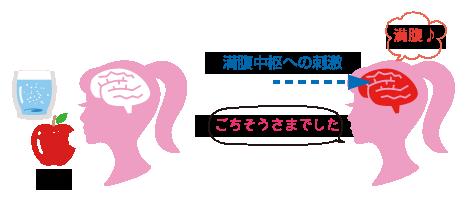 syokuyoku2